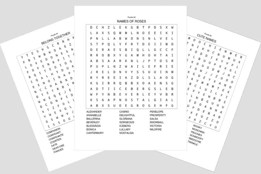 happy valentine's day word search interiors